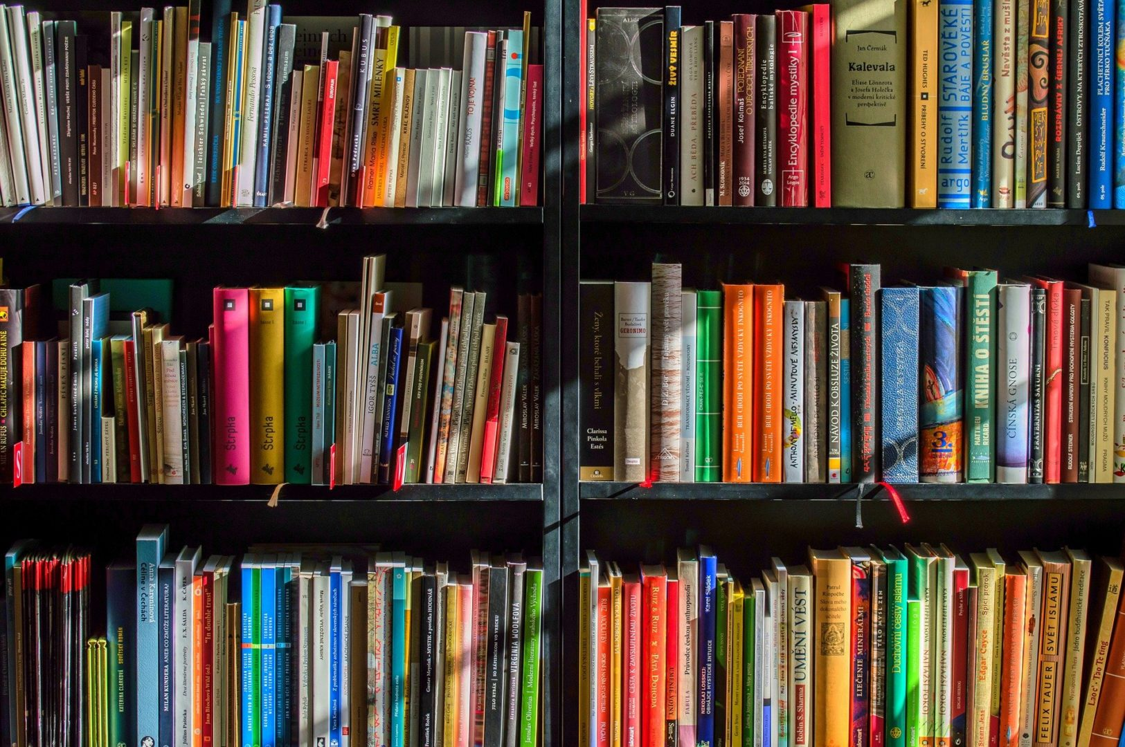A colourful collection of books on shelves
