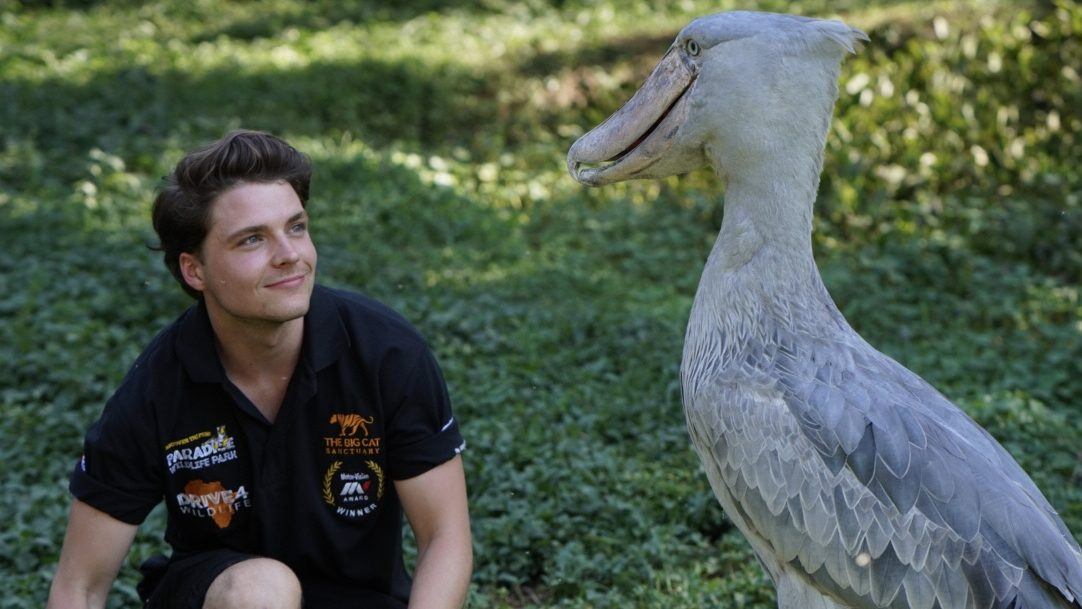 Cam Whitnall sat with an exotic bird